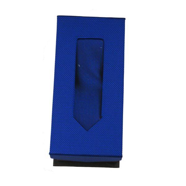 Privato Σ3 Ανδρική Γραβάτα Μπλέ Ρουά 4