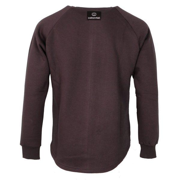 Cotton 4All 21-133 Ανδρική Μπλούζα Φούτερ Γκρί 4